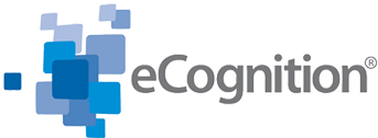 eCognition Blog